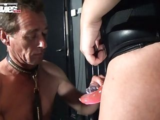 Bootylicious Mistress Larissa Fucks Her Sub's Butt Hole With A Strap Dildo